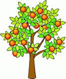 Ramas en el árbol