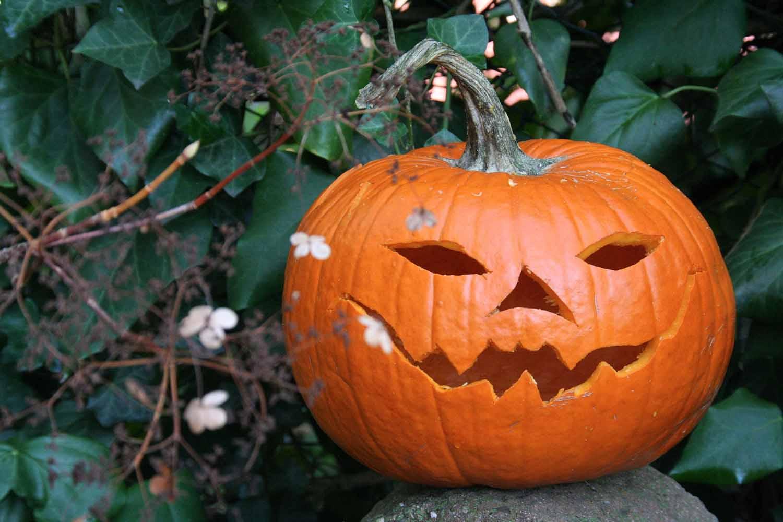 The Pumpkin Prayer